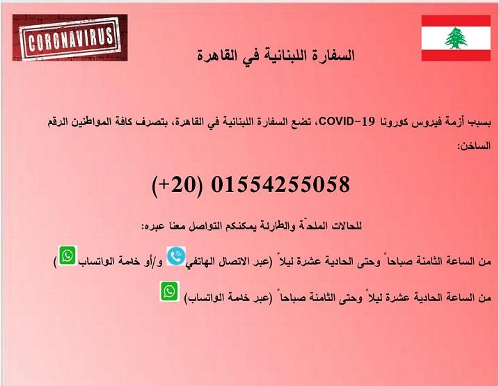 الانتخابات الفرعية لدائرة طرابلس الصغرى