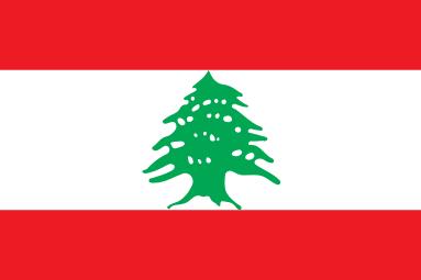 قرار المجلس الدستوري القاضي بإبطال نيابة ديما جمالي وإعلان المقعد السني الخامس في طرابلس شاغراً