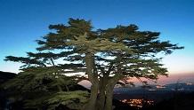 Libanoni Köztársaság